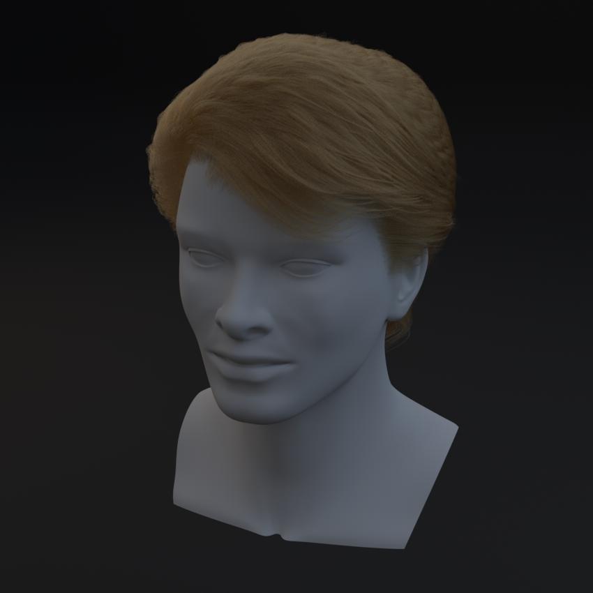0412_Standard_Hair_01