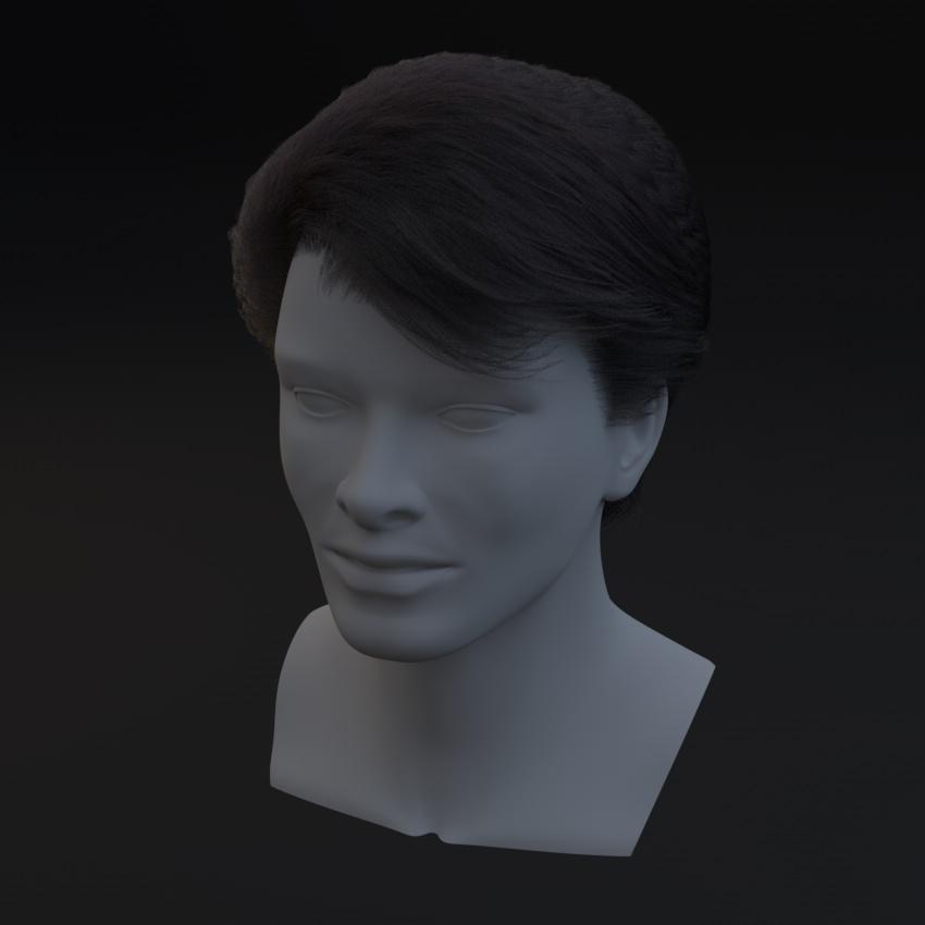 0412_Standard_Hair_03